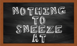 Nothing to Sneeze At - Debbie Nicholson